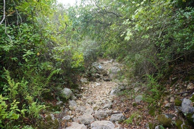 טיול בצפון ישראל
